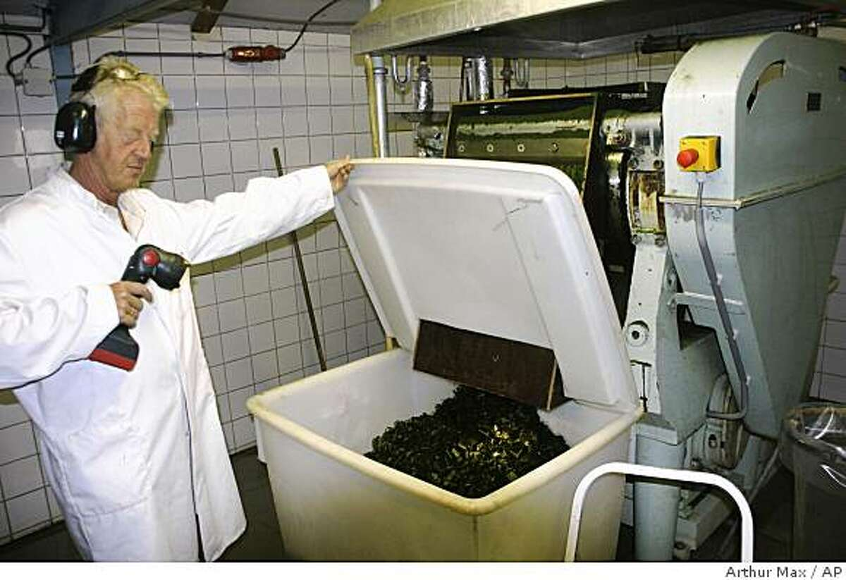 V Heny Masselink shows extracted algae at an algae farm in Borculo, east Netherlands, Thursday, Sept. 4, 2008. The algae from an outdoor pool is made into animal feed, skin preparations, biodegradable plastics, and with increasing interest, biofuel. Experts say algae oil may one day be refined into high-grade kerosene for aviation fuel to power jet aircraft. But most believe it will be years, maybe a decade, before this simplest of all plants can be commercially processed for fuel. (AP Photo/ Arthur Max)
