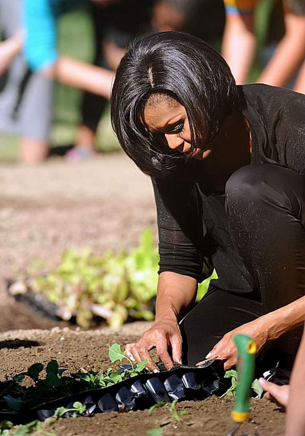 First lady Michelle Obama gets her hands dirty as she plays host to the Spring Garden Planting in the White House Kitchen Garden at the White House in Washington, D.C., on Wednesday, March 31, 2010. (Olivier Douliery/Abaca Press/MCT)