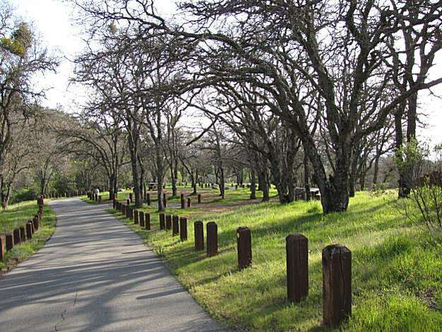 Site: North Gate, Sout Gate and Summit Roads, Mount Diablo State Park. Location: Junction Campground Photo: Stephanie Wright Hession