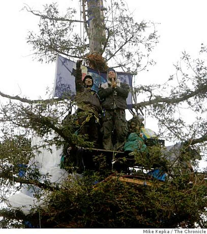 After a two year treetop protest, Huck (left) and Shem, two of the last four tree sitters remaining in what was once a grove of oaks and redwoods on the site of U.C. Berkeley's new sports complex, wave from their perch on Monday Sept. 8, 2008 in Berkeley, Calif. Photo: Mike Kepka, The Chronicle