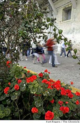 Visitors to Alcatraz walk past gardens that are being restored by the  Garden Conservancy on Tuesday  , Aug, 5  2008 in San Francisco , Calif Photo: Kurt Rogers, The Chronicle