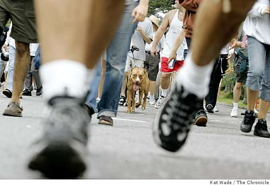 Wear a good pair of shoes and bring the dog to the East Bay AIDS Walk, which  starts at 10 a.m. at Lake Merritt on Sept. 6 Photo: Kat Wade, The Chronicle
