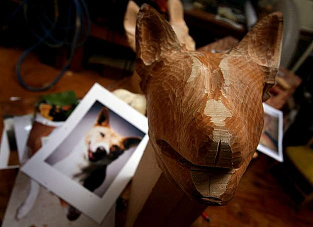 A work-in-progress dog's head sculpture by sculptor Tim Racer sits in Racer's studio in Oakland, Calif. on Monday, March 16, 2009.