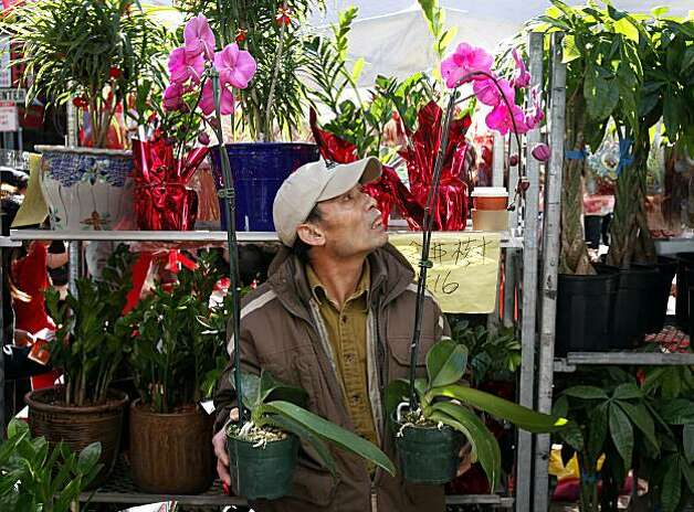Ming Wong chose two colorful orchids for his New Year festivities. The annual Flower Market Fair, in San Francisco's Chinatown, drew thousands of people to the first big event of the Chinese New Year Sunday February 7, 2010. Photo: Brant Ward, The Chronicle