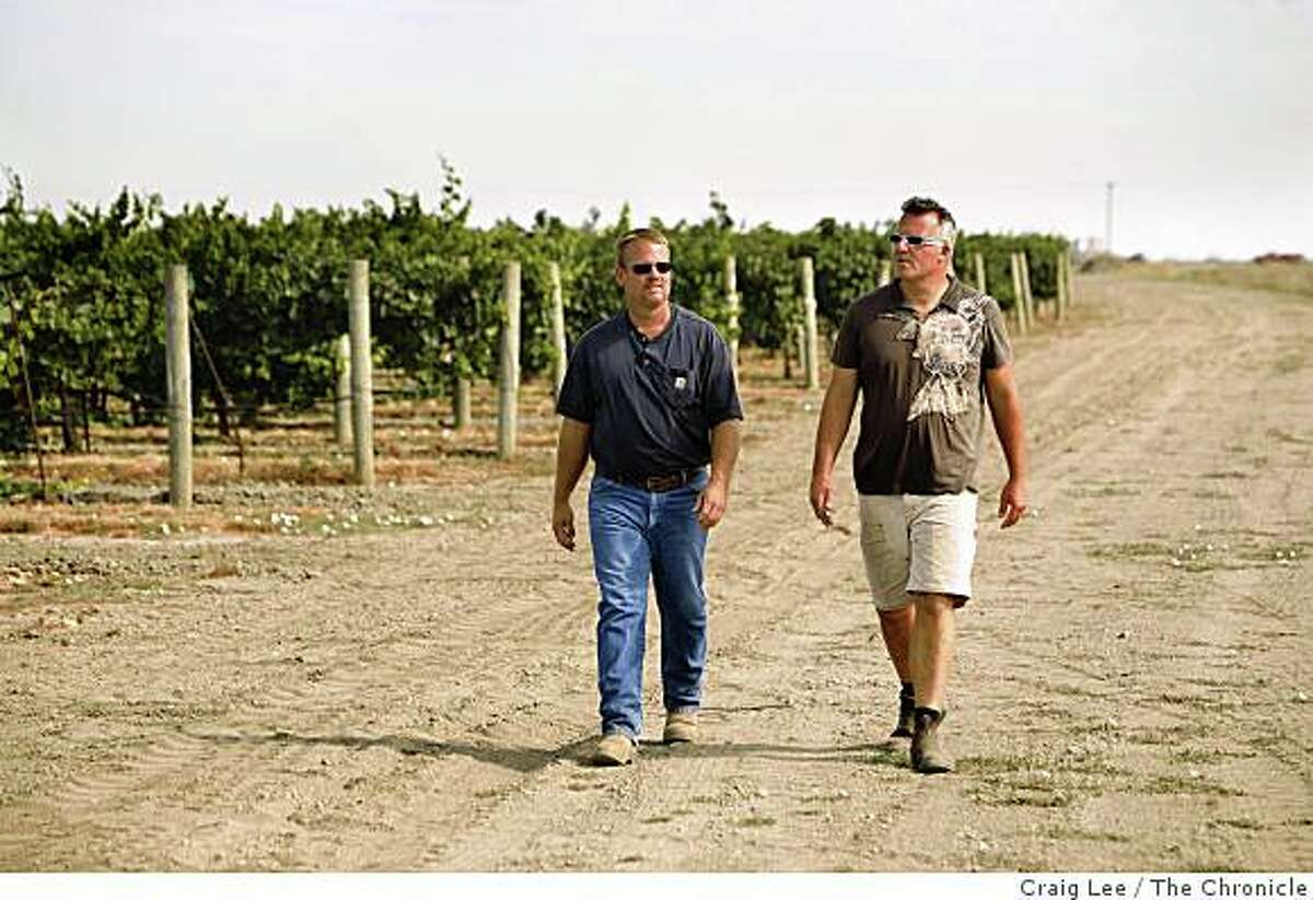 Abe Scholium (right), winemaker for his Scholium Project wine, walking with vineyard manager, Chuck Harrison (left), next to his verdelho vineyard in Walnut Grove, Calif., on July 29, 2008.Photo by Craig Lee / The Chronicle