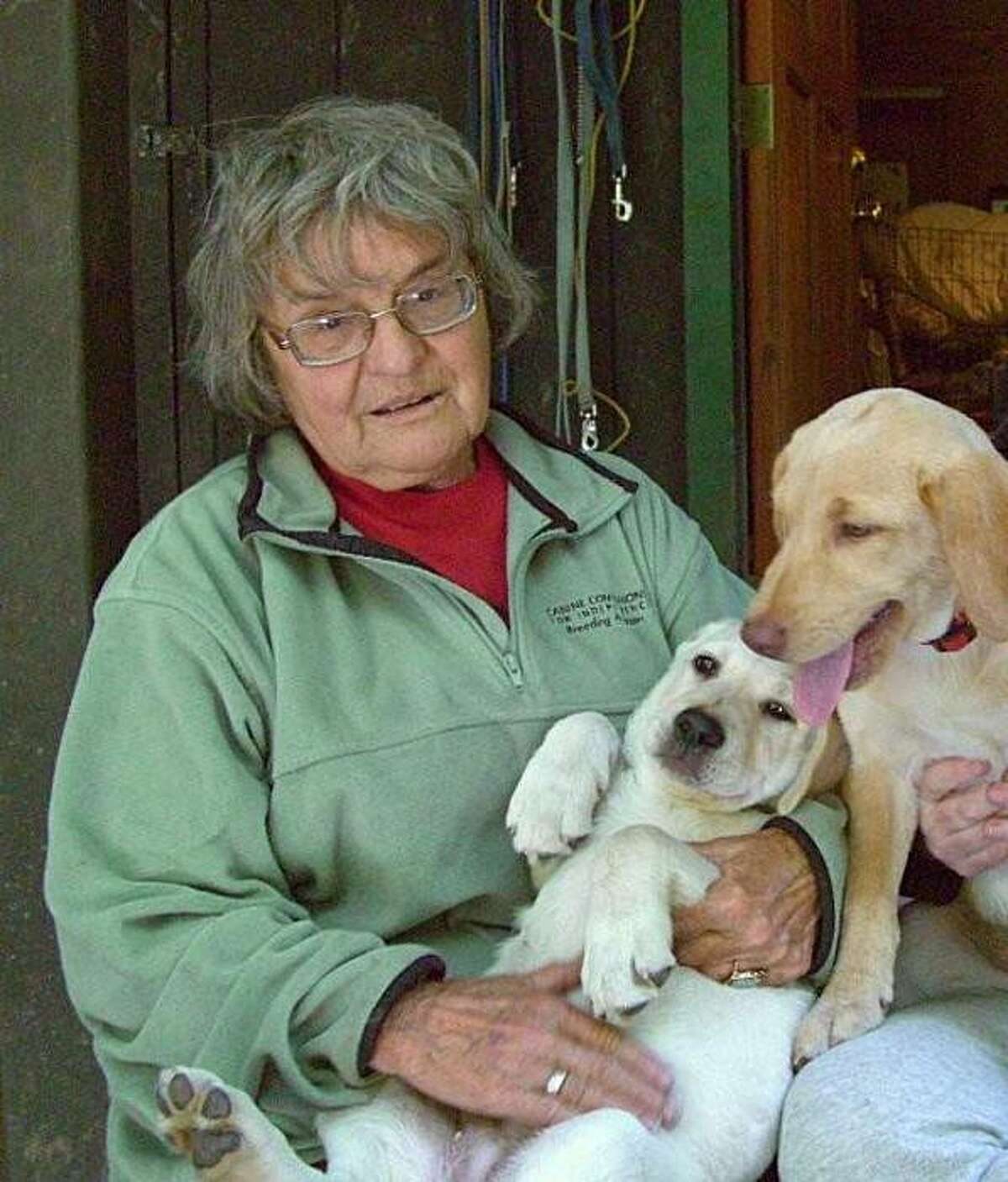 Search crews are looking for a 77-year-old woman, Silvia Lange, who disappeared at Point Reyes National Seashore over the weekend.
