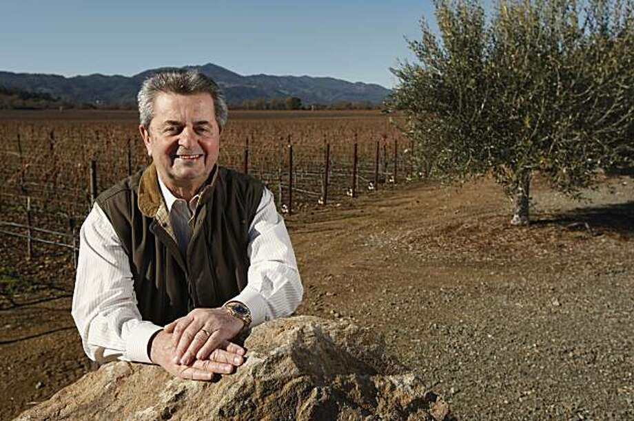 Carmen Policy and his vineyard at his home in Yountville Calif., on December 23, 2009. Photo: Craig Lee, Special To The Chronicle