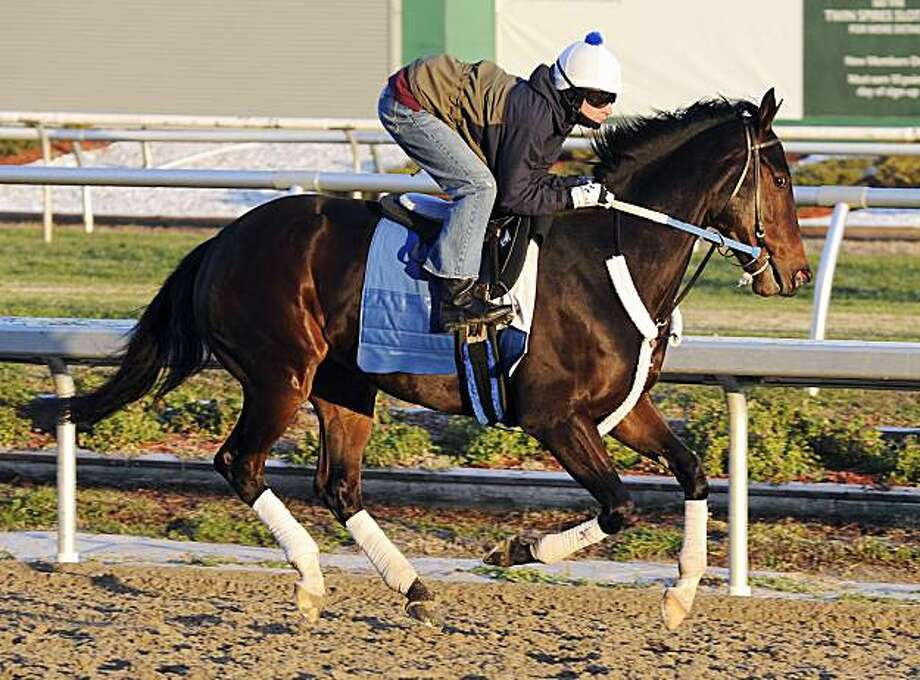 In this photo released by Fair Grounds race coure, horse of the year candidate Rachel Alexandra, with exercise rider Dominic Terry aboard, gallops at the Fair Grounds race course during a morning workout in New Orleans, on Tuesday, Jan. 12, 2010. Photo: Alexander Barkoff, AP