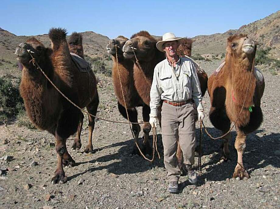 Jim Wiltens with camels he purchased for a 1,000 kilometer ride across the Gobi Desert. Photo: Courtesy Of Jim Wiltens
