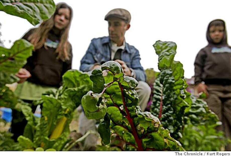 Faye 7 her dad Jordan 40 and younger brother Dashiell 7 decide what part of the Swiss chard to pick in there garden  on Wednesday  , June 25,  2008 in Berkeley, Calif  Photo by Kurt Rogers / The Chronicle. Photo: Kurt Rogers, The Chronicle
