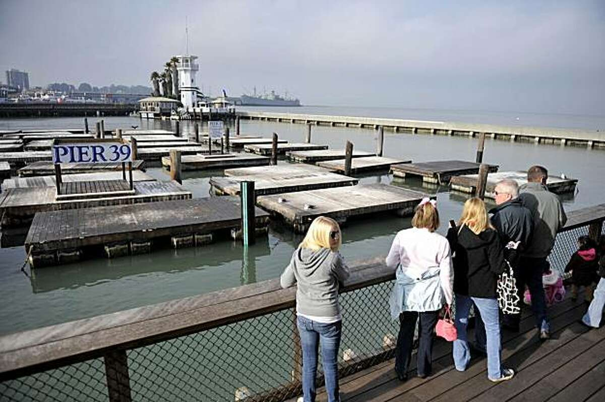 Tourist look at the empty sea lion docks at Pier 39 in San Francisco, Tuesday. More than a thousand sea lions holding court on a pier in San Francisco Bay to the delight of tourists are now largely gone, and experts believe they left in search of food.
