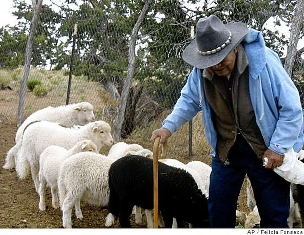 ** ADVANCE FOR WEEKEND EDITIONS, JUNE 28-29 ** Ram Herder, 89, feeds his sheep on his home site in Sanders, Ariz. on May 22, 2008. More than 20 years ago, the federal government bought land here for thousands of Navajos who were relocated off land Congress said belonged to the Hopi tribe. It's different here than elsewhere on the Navajo Nation, all the roads are paved, schools and clinics are a short drive away, and everyone has electricity and running water. But the federal office that has provided for those conveniences is set to close, and some Navajos are arguing that it's too soon. (AP Photo/Felicia Fonseca)