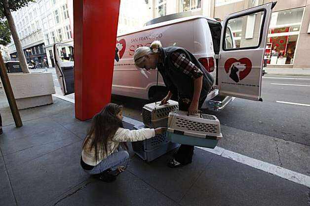 Christine Jackson, 8, of San Francisco, greets Don, a 3-year-old Chihuahua upon his arrival at Macy's Union Square. He  is part of the holiday window project where Christmas shoppers can adopt a cat or dog on the spot. Client care specialist, Amber Eby, (right) was part of the transport team. Photo: Michael Macor, The Chronicle