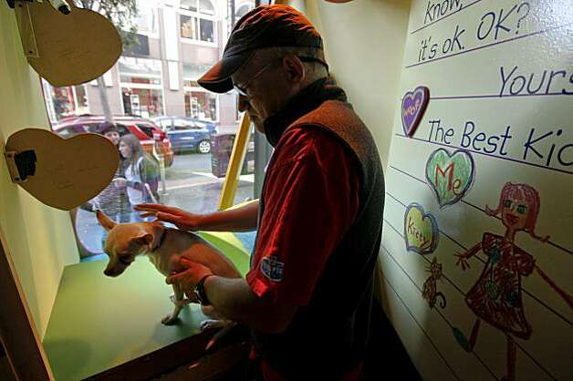 Don, a 3-year-old Chihuahua, is placed into the display window for all to see at Macy's Union Square by SPCA volunteer Gary Fields. Photo: Michael Macor, The Chronicle