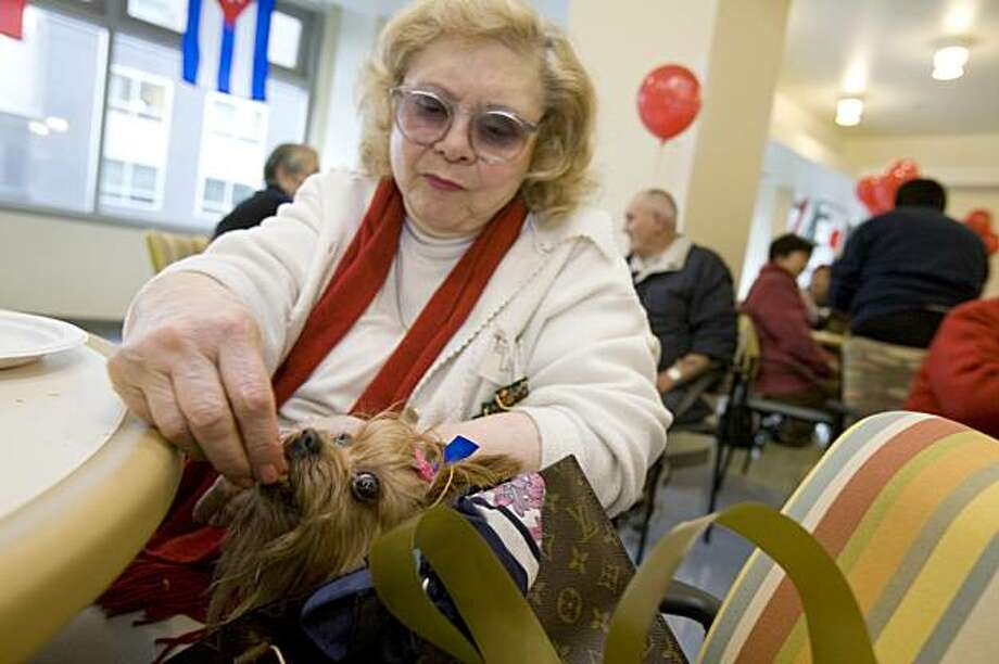 Camille Barnes sneaks a little snack to her dog, Rebel, at Little Brothers Friends of the Elderly's annual Christmas party on Saturday at Mission Creek Senior Community in San Francisco. The event provides seniors with lunch, gifts, and companionship. Photo: Adam Lau, The Chronicle