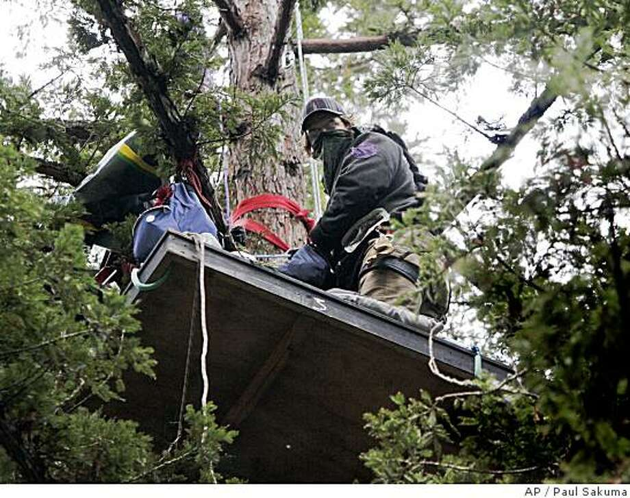 A tree sitter at UC Santa Cruz protested removing trees to build a science building. Photo: Paul Sakuma, AP
