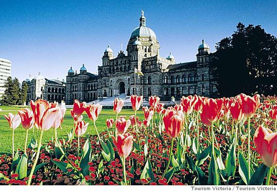 Tulips highlight the Parliament Building in Victoria, the capital of British Columbia. Photo: Tourism Victoria