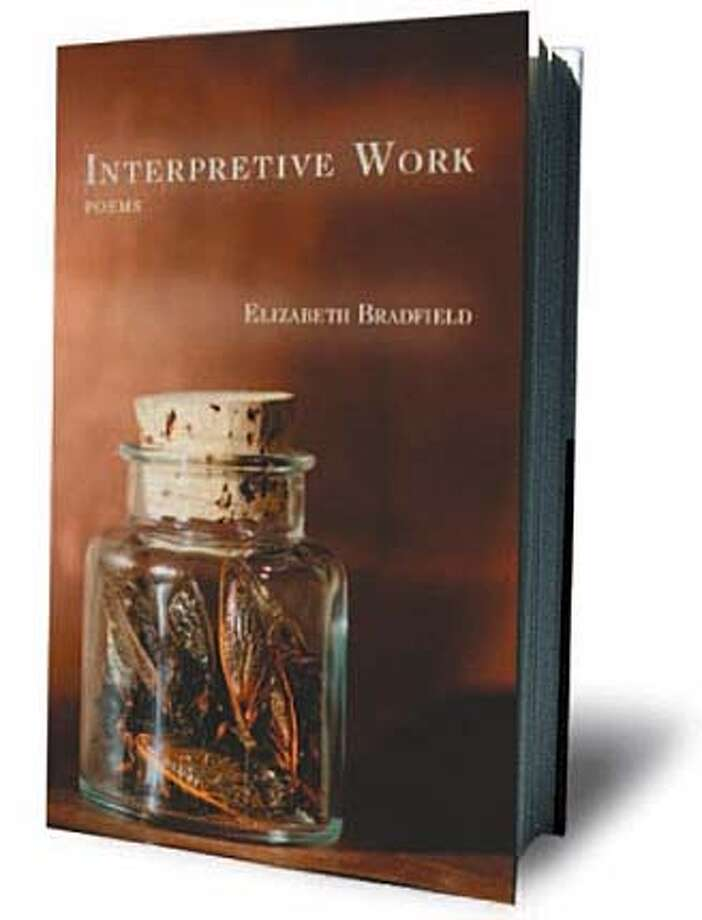 Interpretive Work by Elizabeth Bradfield