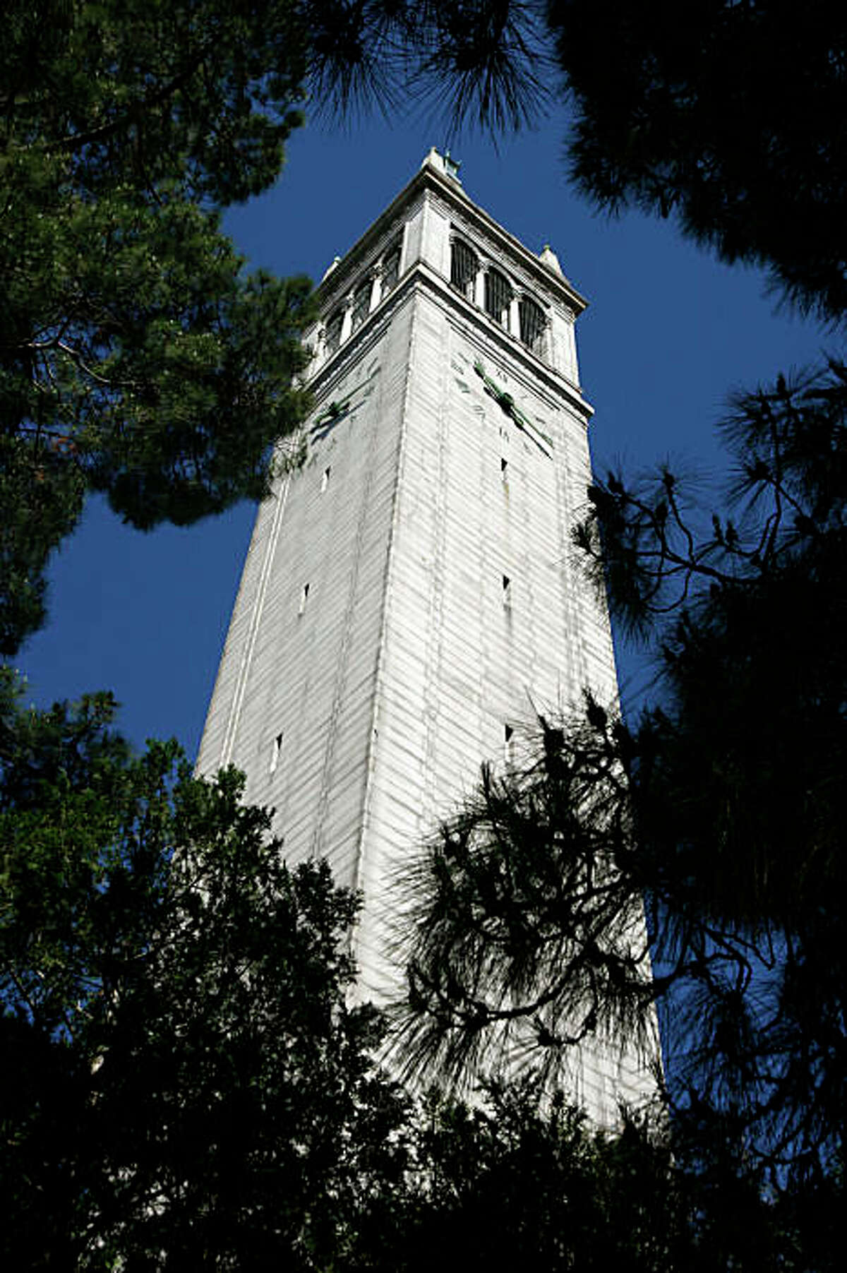 The 307-foot-high Campanile towers above every tree on the Cal campus in Berkeley, Calif., on Wednesday, June 4, 2008. The bell tower, offically known as Sather Tower, will host the Berkeley Carillon Festival from June 10 thru June 13 and is attracting carillonneurs from all over the world. Photo by Paul Chinn / The Chronicle