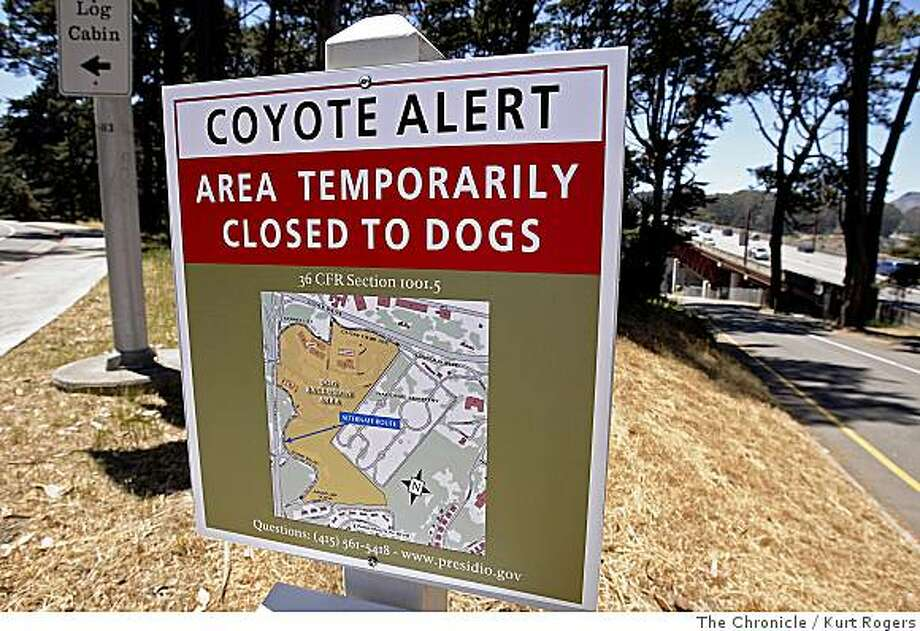 Coyote Alert sign in the Presidio telling people that the area is Temporarily closed to Dogs.This is  along Lincoln Blvd  on Thursday , June 5,  2008 in San Francisco , Calif  Photo by Kurt Rogers / The Chronicle. Photo: Kurt Rogers, The Chronicle
