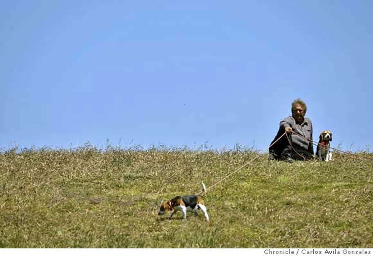 ###Live Caption:Jerry Acu-a, of Berkeley, takes his beagles, Aristophanes, left, and Sophia, right, out for a walk at the Berkeley Marina in Berkley, Calif., on Tuesday, May 13, 2008, as temperatures began to climb.National weather service issues a heat warning for the Bay Area for Wednesday through Friday, with possible record temperatures for the date in store. Photo by Carlos Avila Gonzalez / San Francisco Chronicle###Caption History:Jerry Acu�a, of Berkeley, takes his beagles, Aristophanes, left, and Sophia, right, out for a walk at the Berkeley Marina in Berkley, Calif., on Tuesday, May 13, 2008, as temperatures began to climb.National weather service issues a heat warning for the Bay Area for Wednesday through Friday, with possible record temperatures for the date in store. Photo by Carlos Avila Gonzalez / San Francisco Chronicle###Notes:Notes, Contacts, Name CQ's here###Special Instructions:NORTHERN CALIF. MANDATORY CREDIT: PHOTOG AND SAN FRANCISCO CHRONICLE. MAGS OUT, NO SALES