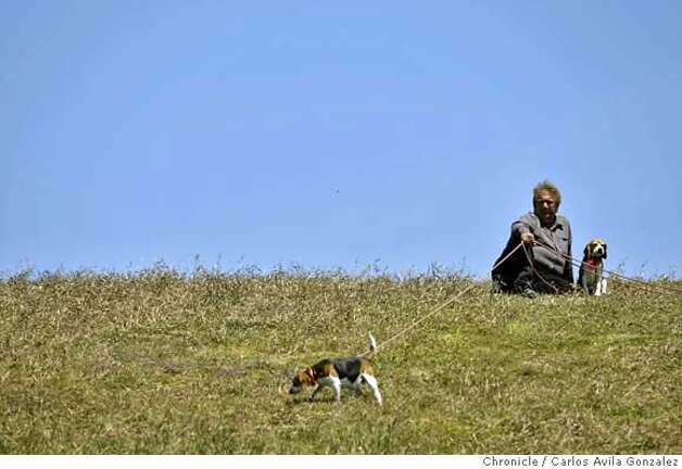 ###Live Caption:Jerry Acu–a, of Berkeley, takes his beagles, Aristophanes, left, and Sophia, right, out for a walk at the Berkeley Marina in Berkley, Calif., on Tuesday, May 13, 2008, as temperatures began to climb.National weather service issues a heat warning for the Bay Area for Wednesday through Friday, with possible record temperatures for the date in store. Photo by Carlos Avila Gonzalez / San Francisco Chronicle###Caption History:Jerry Acu�a, of Berkeley, takes his beagles, Aristophanes, left, and Sophia, right, out for a walk at the Berkeley Marina in Berkley, Calif., on Tuesday, May 13, 2008, as temperatures began to climb.National weather service issues a heat warning for the Bay Area for Wednesday through Friday, with possible record temperatures for the date in store. Photo by Carlos Avila Gonzalez / San Francisco Chronicle###Notes:Notes, Contacts, Name CQ's here###Special Instructions:NORTHERN CALIF. MANDATORY CREDIT: PHOTOG AND SAN FRANCISCO CHRONICLE. MAGS OUT, NO SALES Photo: Carlos Avila Gonzalez