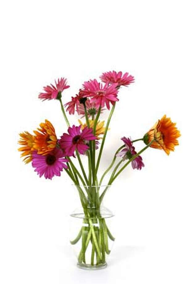 flowers in a vase. credit Jhason (CQ) Abuan. One time use for 5/7/2008. Photo: Jhason Abuan