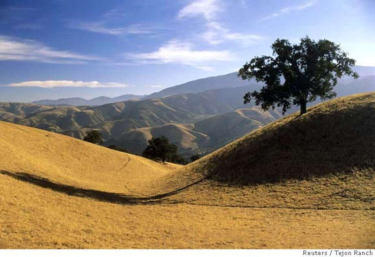 The Golden Hills region of the Tejon Ranch in Southern California is shown in this undated publicity photo released to Reuters May 8, 2008. Environmentalists and a California real estate company on Thursday reached a long-fought deal to conserve and protect an area eight times the size of San Francisco from land developers. REUTERS/Tejon Ranch/ Handout (UNITED STATES). NO SALES. NO ARCHIVES. FOR EDITORIAL USE ONLY. NOT FOR SALE FOR MARKETING OR ADVERTISING CAMPAIGNS.