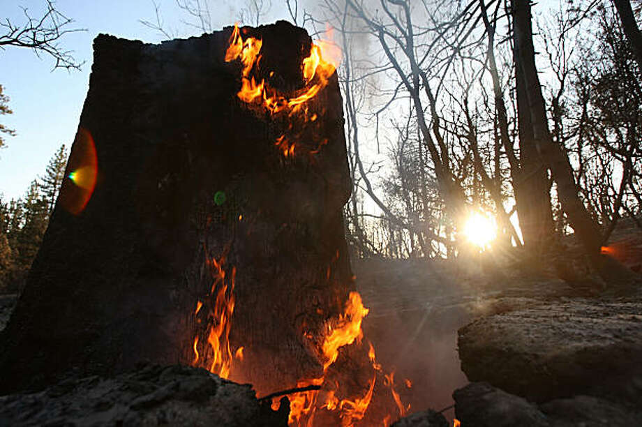 LOS ANGELES, CA - SEPTEMBER 16:  A stump continues to burn weeks after fire swept through in the charred landscape left in the wake of the 250 square mile Station fire as firefighters work to complete the final nine percent of defensible fireline to contain the massive blaze in the San Gabriel Mountains on September 16, 2009 in the Angeles National Forest, northeast of Los Angeles, California. The arson-sparked wildfire is the largest in Los Angeles County history and the tenth largest ever fought in California. Two firefighters were killed and 89 homes destroyed in the inferno that began three weeks ago. Firefighters expect to have full containment by the week's end. It could be many more days before control is declared. Firefighting costs could exceed USD 100 million, according to official sources.  (Photo by David McNew/Getty Images) Photo: David McNew, Getty Images
