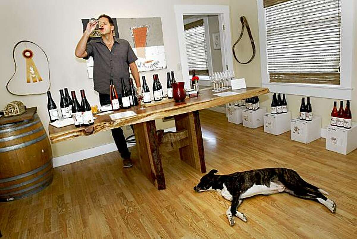 Winemaker Toby Hill in his Phillips Hill tasting room right in downtown Philo. His dog, Jackson decorates the floor. Meyer Family Cellars, Breggo Cellars and Phillips Hill are three of the newer winery tasting areas to open on Highway 128 between Yorkville and west of Philo.
