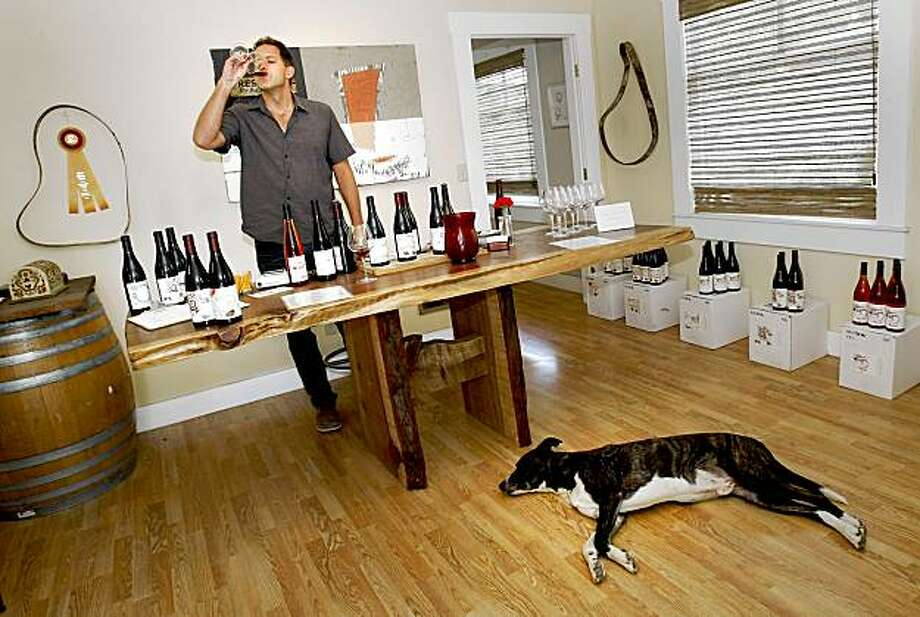 Winemaker Toby Hill in his Phillips Hill tasting room right in downtown Philo. His dog, Jackson decorates the floor. Meyer Family Cellars, Breggo Cellars and Phillips Hill are three of the newer winery tasting areas to open on Highway 128 between Yorkville and west of Philo. Photo: Brant Ward, The Chronicle