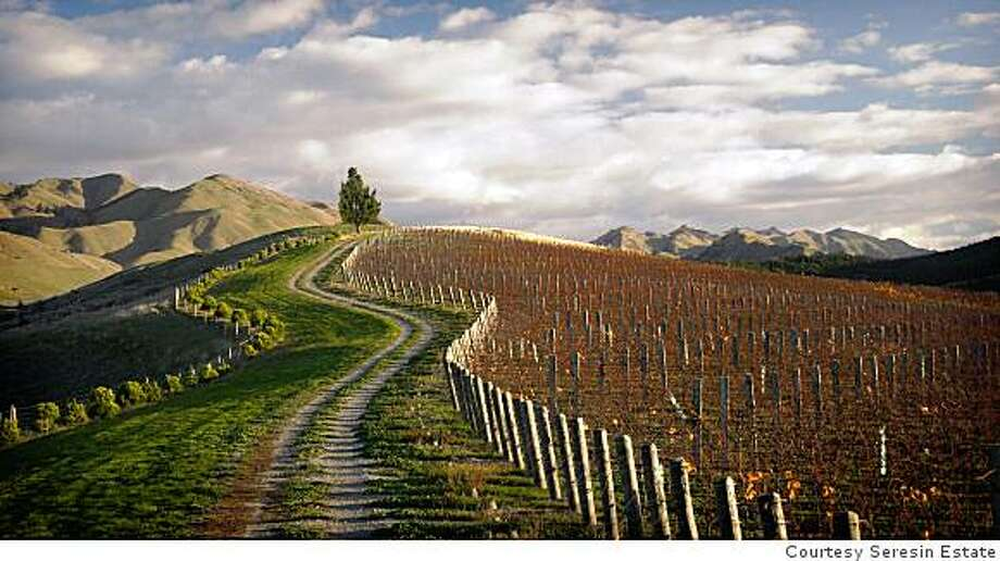 A vineyard of the winery Seresin Estates in Marlborough, New Zealand. Seresin is a biodynamic winery that renounces the standard production techniqueSeresin Raupo Creek Vineyard � This particular block is part of our �Raupo Creek� Vineyard, a clay based hillside vineyard at the back of the Omaka Valley (Southern Valleys) in Marlborough. Most of our Pinot Noir comes from this vineyard but it is also planted with Chardonnay, Gewurztraminer, Sauvignon Blanc, Semillion, Pinot Gris and Riesling. Photo: Courtesy Seresin Estate