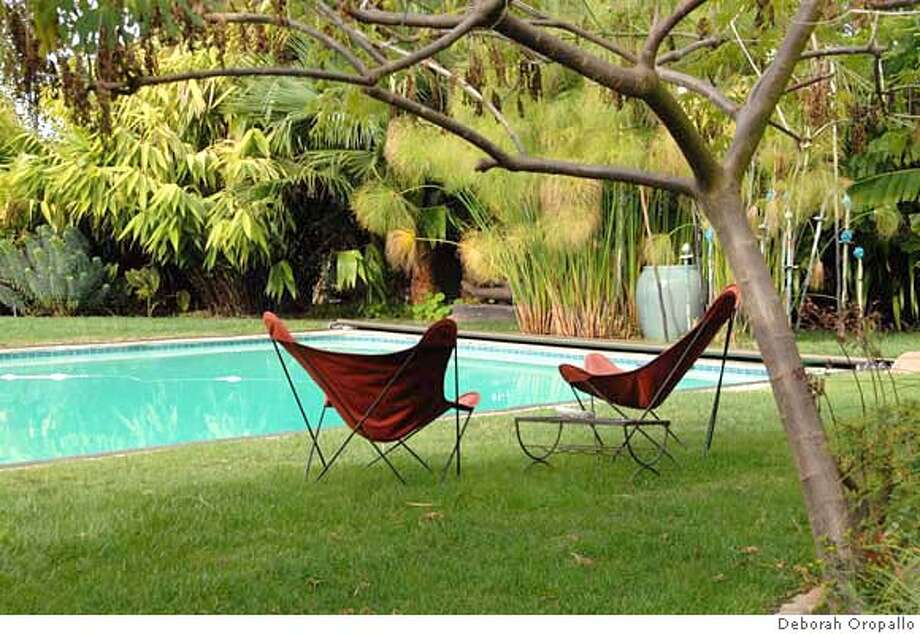 Garden Furniture East Bay spring house and garden tours - and plant sales - sfgate