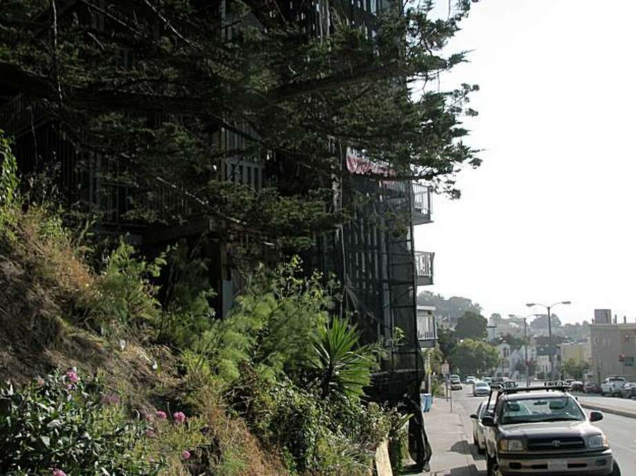 The city of San Francisco recently removed  a large cypress tree that  fell two years ago on a hilly property in the 3100 block of Market Street. Photo: The Chronicle