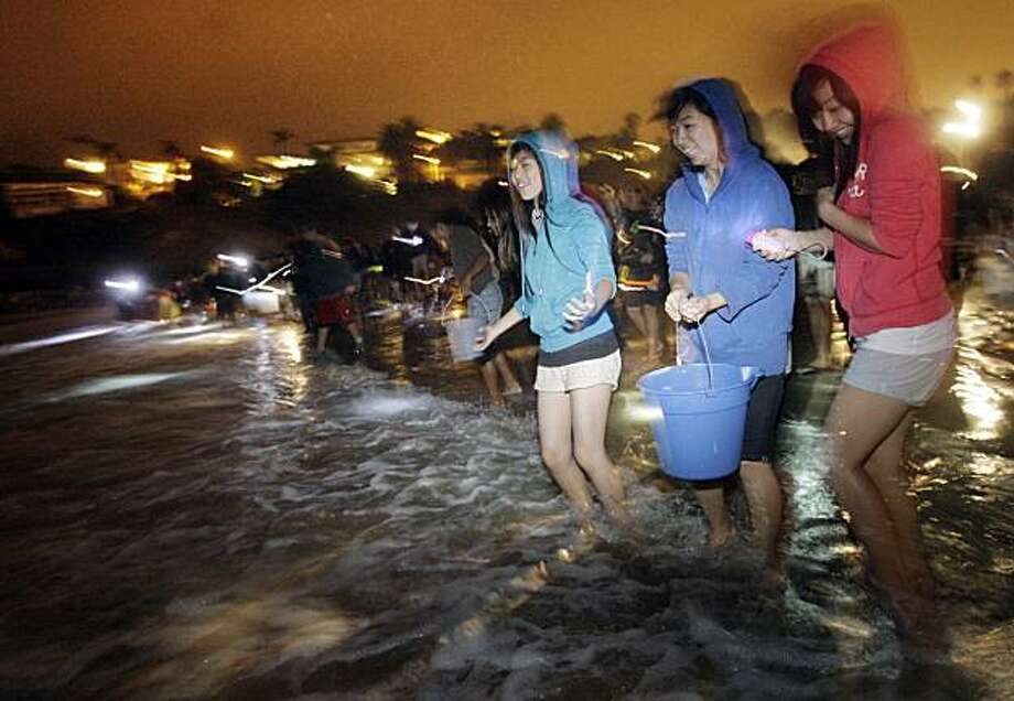 In this photo taken July 23, 2009, people stand on the beach to catch grunion during a grunion run at Cabrillo Beach in San Pedro, Calif. The California grunion does something no other fish on the planet is known to do. It surfs a wave right out of its world and into ours. Then it plops itself down on the sand to lay and fertilize its eggs before waiting patiently for another big wave to carry it home. (AP Photo/Jae C. Hong) Photo: Jae C. Hong, AP