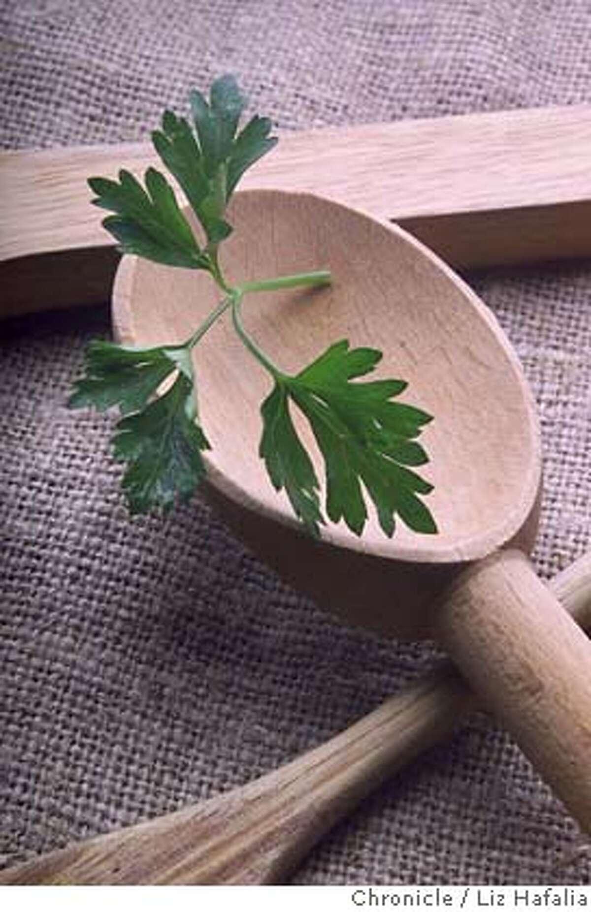 ###Live Caption:italian parsley###Caption History:FOODHERBS-C-24JUL00-FD-LH--Italian parsley. Photo by Liz Hafalia/STYLED BY NOEL ADVINCULA###Notes:###Special Instructions:cat