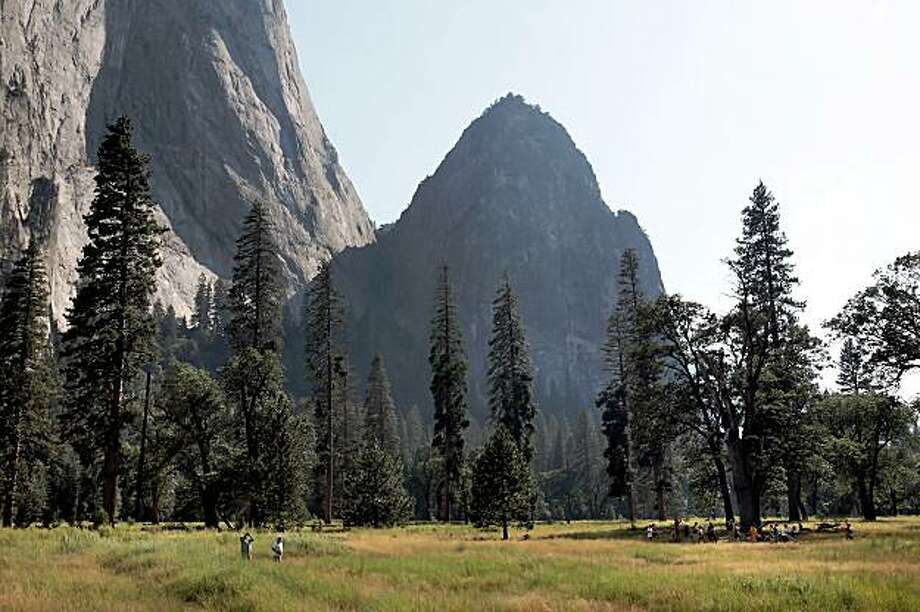 Yosemite National Park visitors gather in El Capitan Meadow to watch climbers. In addition to the climbing, visitors come to the park to appreciate the natural surroundings. U.S. Geological Survey and University of  Washington scientists have determined that large trees have declined in Yosemite National Park  during the 20th century. A decline in large trees means habitat loss and possible reduction in some animal species and large-diameter  trees generally resist fire more than smaller trees, potentially slowing forest regeneration after fires. Photo: Carlos Avila Gonzalez, SFC