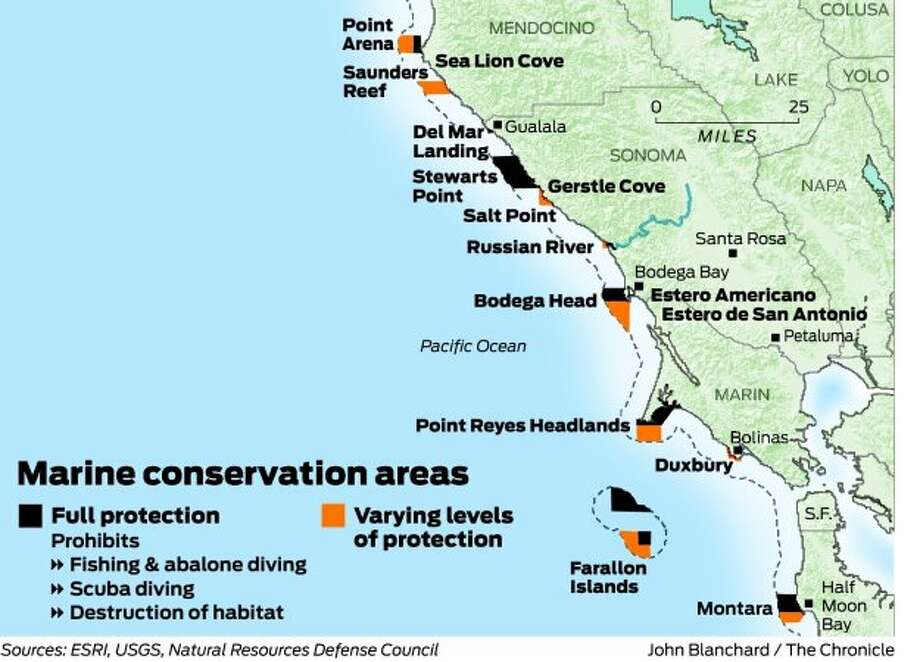 State creates network of marine reserves - SFGate