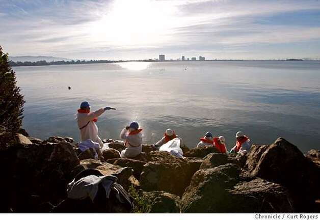 Berkeley beach cleanup in the bay crews work on the rocky shoreline in near the Shoreline park off University Ave.  SPILL21_CLEANUP_0001_KR.jpg  Kurt Rogers / The Chronicle Photo taken on 11/21/07, in San Francisco, CA, USA MANDATORY CREDIT FOR PHOTOG AND SAN FRANCISCO CHRONICLE/NO SALES-MAGS OUT Photo: Kurt Rogers