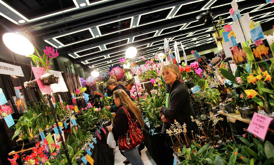 "People look at orchids at the Kawamoto Orchid Nursery display at the Northwest Flower and Garden Show on Friday, Feb. 10, 2012. Over 300 plant and garden exhibitors display their products and creations at the show. This years theme is ""A Floral Symphony."" Photo: JOE DYER / SEATTLEPI.COM"