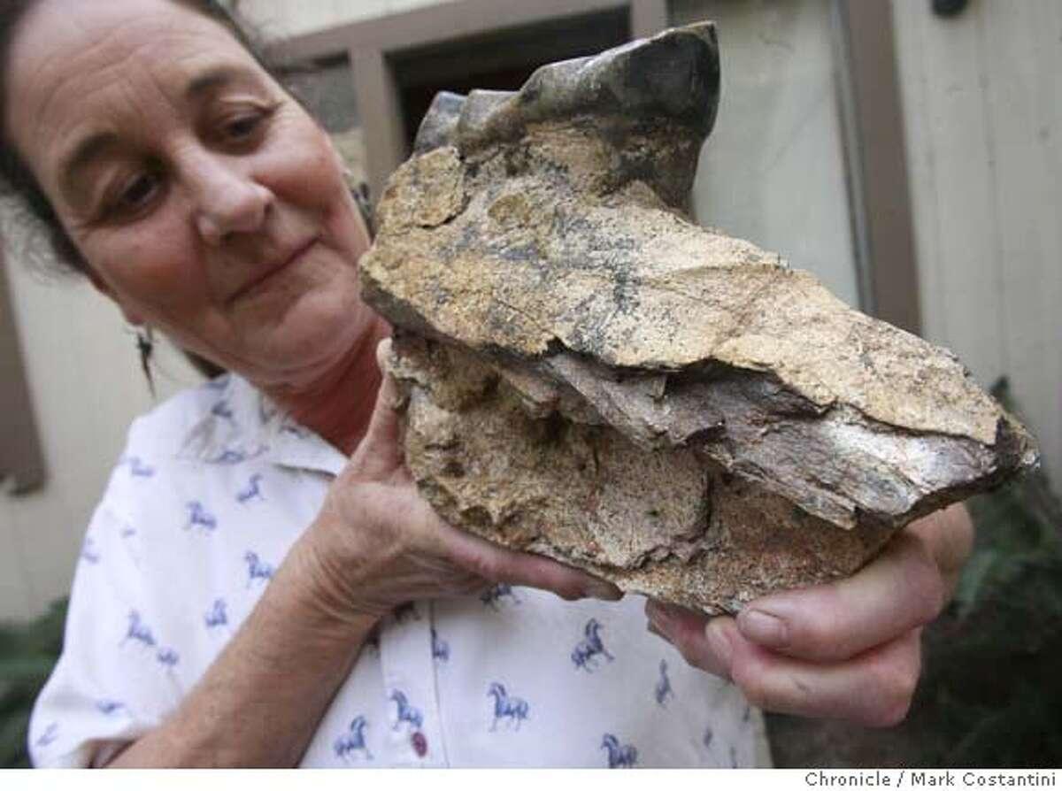 ###Live Caption:Nancy Fiddler, owner of million year old