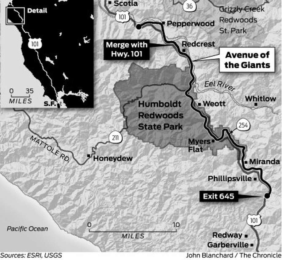 Sunday Drive: Avenue of the Giants - SFGate on