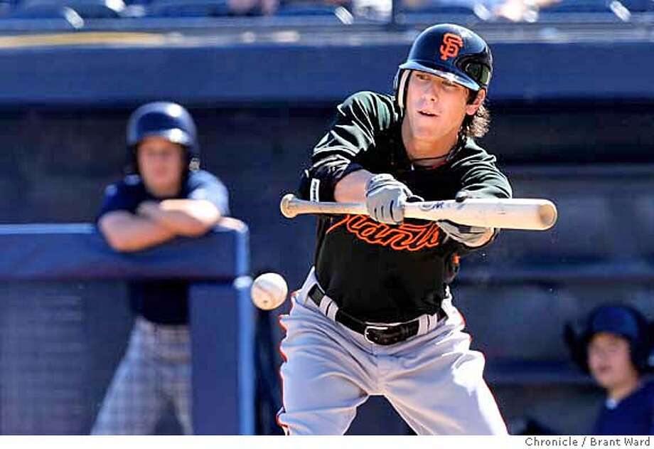 The Giants Tim Lincecum layed down a perfect bunt in the 3rd inning Tuesday. On March 4, 2008 the San Francisco Giants played the San Diego Padres at Peoria Stadium during spring training. Photo by Brant Ward / San Francisco Chronicle Photo: Brant Ward