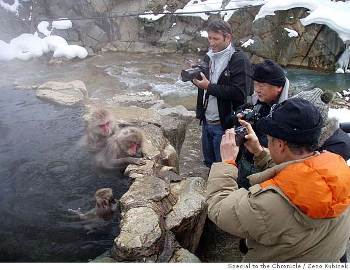 TRAVEL SNOW MONKEYS -- Visitors shoot close-up photos of the macaque monkeys --