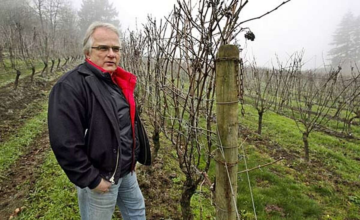 Harry Peterson-Nedry (CQ), owner of Chehalem Winery near Newberg, thinks vintners will introduce warmer climate grape varieties as temperatures warm in Oregon's wine country. He is standing near Pinot Noir grapevines at the Newberg winery.