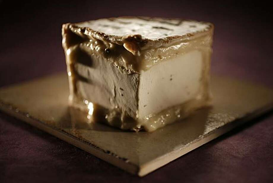 CHEESE08_02_JOHNLEE.JPG Truffle Tremor cheese. By JOHN LEE/SPECIAL TO THE CHRONICLE Photo: John Lee, SFC