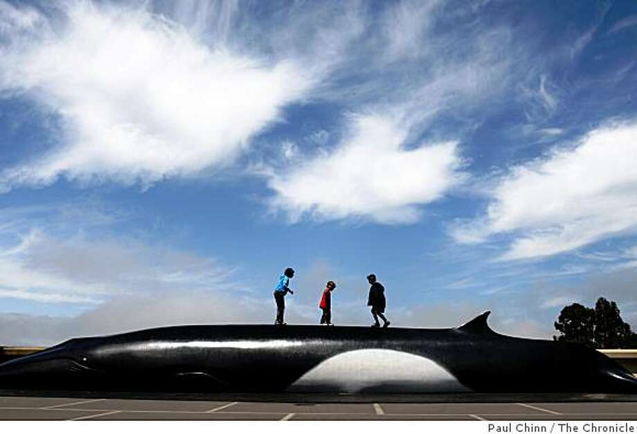 Students from Kitayama Elementary School in Union City climb on a sculpture of a fin whale while on a field trip at the Lawrence Hall of Science in Berkeley, Calif., on Tuesday, June 2, 2009 after cloudy skies opened up to let the sunshine in. Photo: Paul Chinn, The Chronicle