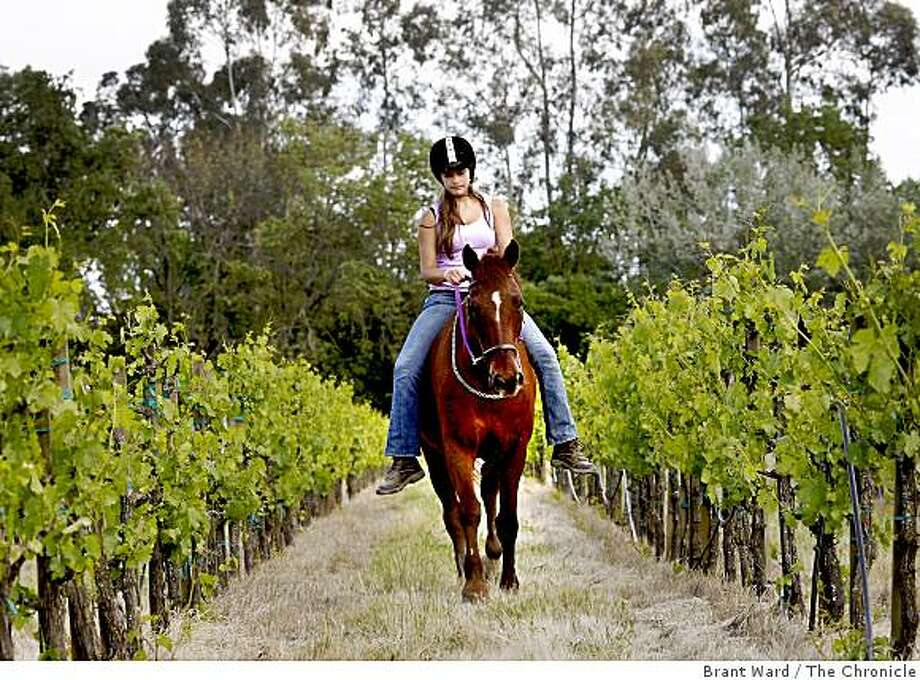 Kiren and Tara, the horse, walk through a row of Chardonnay growing near the stables. Kiren Donaldson, 14, rides a rescue horse named Tara. Last year they won a National Super Horse competition. They work out at Sunrise Stables in St. Helena Monday May 5, 2009. Photo: Brant Ward, The Chronicle