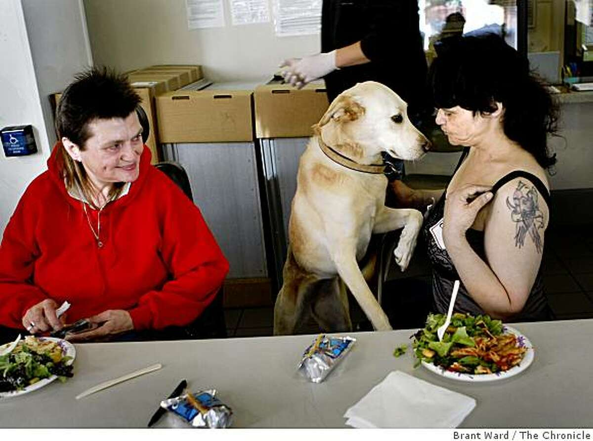 """Dutchess, the labrador, comes to beg for some dinner from Cindi Keener, her owner, while Sabrina Pickford (left) looks on. """"Dinner With Grace"""" is a volunteer program where Grace Cathedral members cook a sit down meal once a month with residents of a hotel in the Tenderloin district of San Francisco. This week the meal is served at the Coast Hotel on O'Farrell Street in San Francisco, CA."""