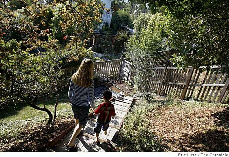 Artichokes in the front yard of Elizabeth Singh and her son Arjun,6, walk down to the family garden at her home  photographed  in San Anselmo on Monday, May 11, 2009. Photo: Eric Luse, The Chronicle
